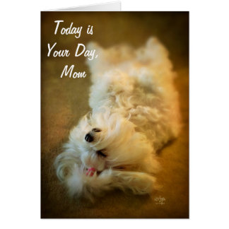 Happy Mother's Day Relaxing Dog Card by Lois Bryan