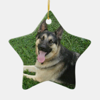 Happy New Year! GSD Ceramic Star Decoration