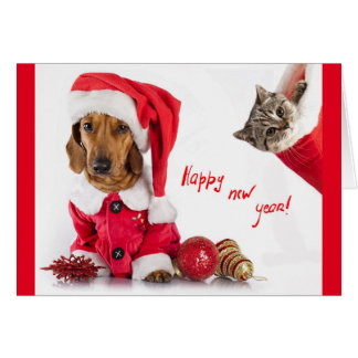 Happy new year post card with picture of pets.