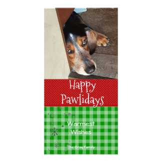 Happy Pawlidays | Pet Christmas Photo Card