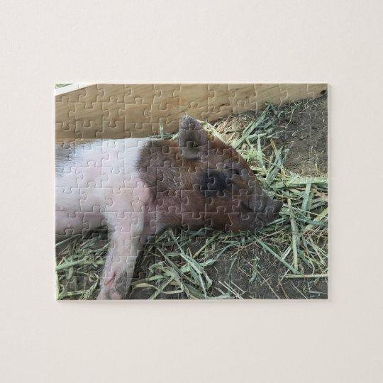 Happy Pig Puzzle