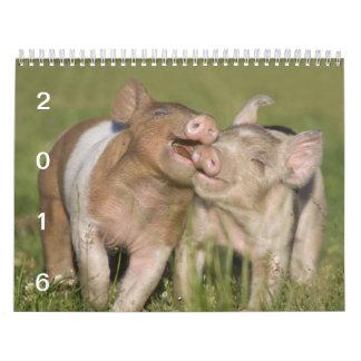 Happy Piglets - 2016 Pig Calendar