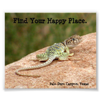Happy Place Lizard Print