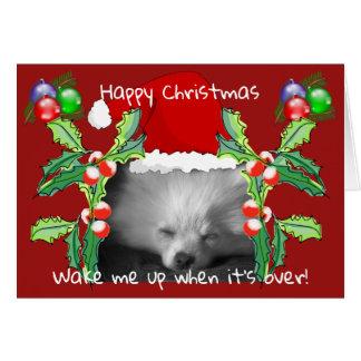 Happy Pomeranian Puppy Christmas Card