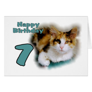 Happy Seventh Birthday Calico Cat Card