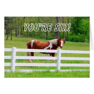 Happy Sixth Birthday Paint Horse Card