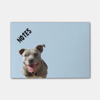 Happy Smiling Pitbull Post-it Notes