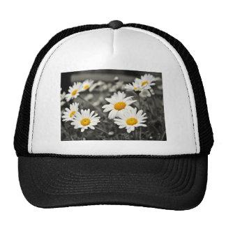 Happy Summer Daisies Hat