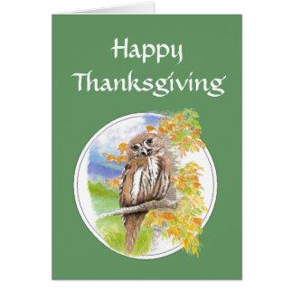Happy Thanksgiving, Autumn, Fall Owl  Bird, Nature Card