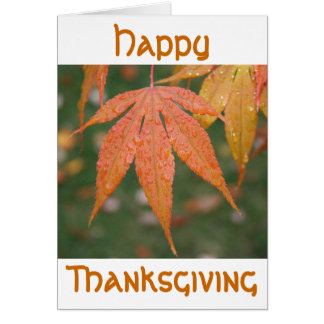Happy, Thanksgiving Card