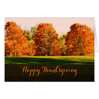 Happy Thanksgiving cards with three coloful trees