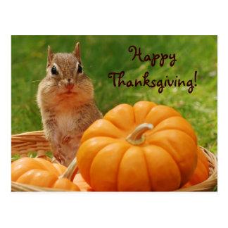 Happy Thanksgiving Cute Chipmunk Postcard