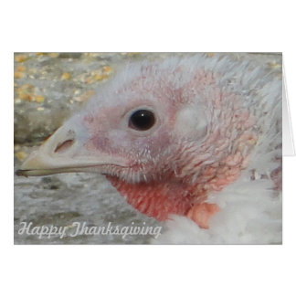 Happy Thanksgiving Day Card 3