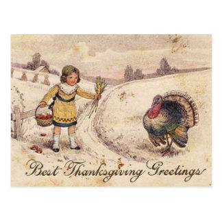 Happy Thanksgiving Greetings Postcard