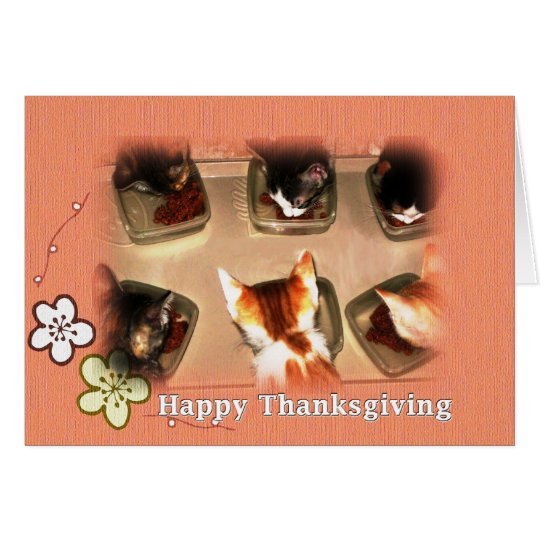 Happy Thanksgiving Kittens Card