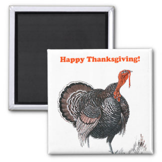 Happy Thanksgiving Vintage Turkey Drawing Magnet