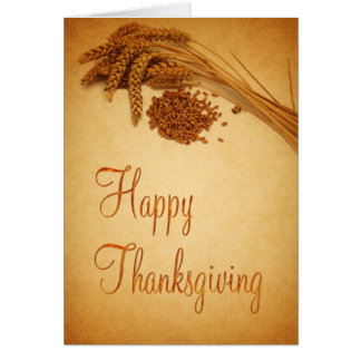 Happy Thanksgiving Wheat - Greeting Card