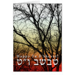 Happy Tu B'Shevat! : Jewish Arbor Day Note Card