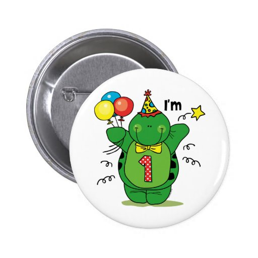 Happy Turtle 1st Birthday Pinback Buttons
