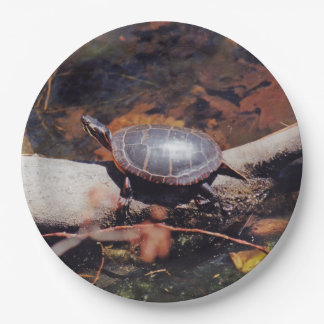 Happy Turtle Paper Plate