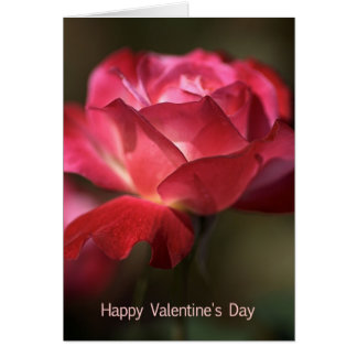 Happy Valentine s Day - Rose Greeting Card