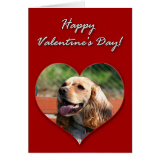 Happy Valentine's day Cocker Spaniel Card