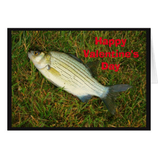 Happy Valentine's Day Cute Little Bass Card