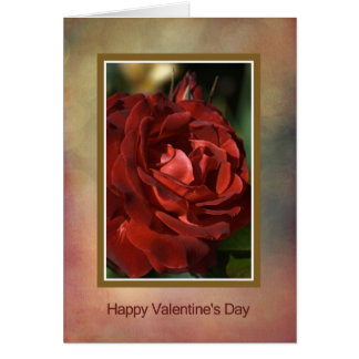 Happy Valentine's Day - Red Rose Cards