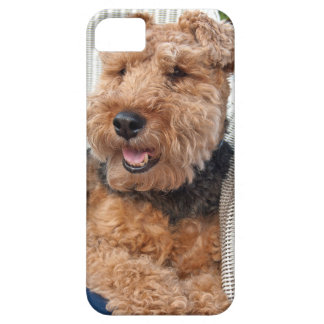 happy Welsh Terrier iPhone 5 Cover