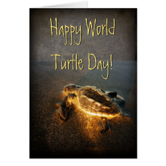 Happy World Turtle Day Card