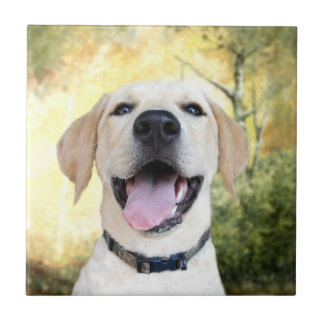 Happy Yellow Lab Tile