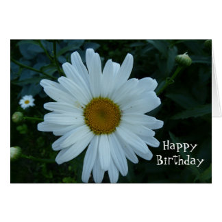 HappyBirthday-Daisy Greeting Card