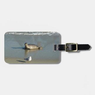 Harbor Seal at La Jolla California Luggage Tag