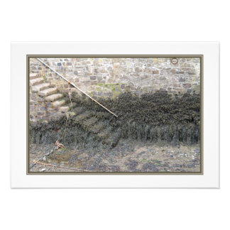 Harbor Steps at Low Tide Personalized Invitation