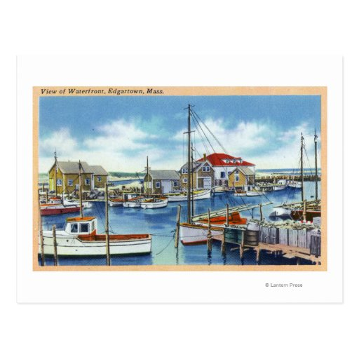 Harborview of the Waterfront Postcards