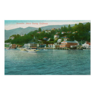 Harborview with Yachts and Sail Boats Poster