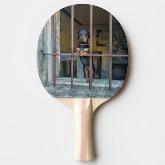 Hard Time Ping Pong Paddle