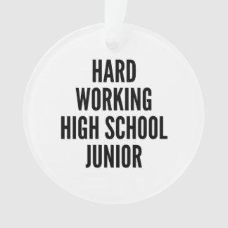 Hard Working High School Junior