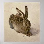 Hare, 1502 print