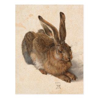 Hare | Albrecht Dürer Postcard
