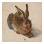 Hare   Albrecht Dürer Poster