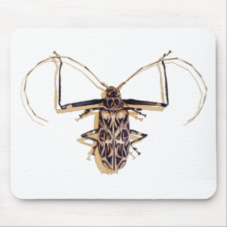 """Harlequin beetle"" Insect Watercolor Bug Mouse Pad"