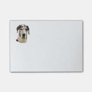 Harlequin Great Dane dog photo Post-it Notes