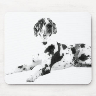 Harlequin Great Dane Mouse Pad