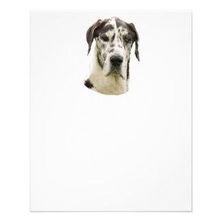 Harlequin Great Dane Portrait Photo Personalized Flyer