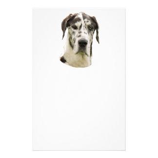 Harlequin Great Dane Portrait Photo Custom Flyer