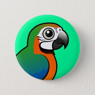Harlequin Macaw 6 Cm Round Badge