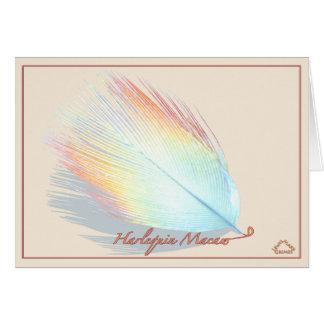 Harlequin Macaw -Card Card