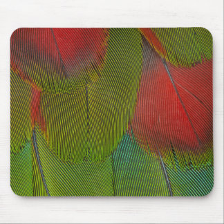 Harlequin Macaw Feather Abstract Mouse Pad