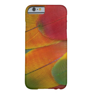 Harlequin Macaw parrot feathers Barely There iPhone 6 Case